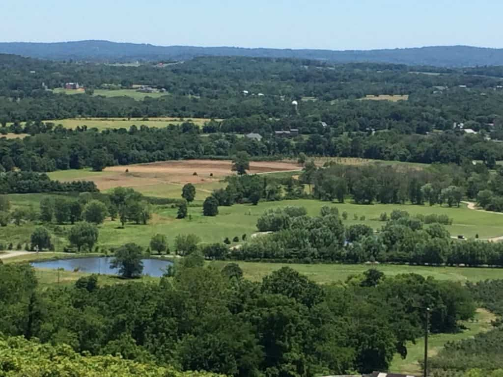 Landscape Around D.C. Bluemont Vineyard