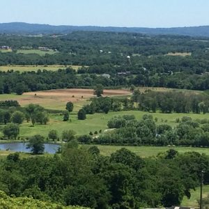 Featured Day Trip from DC: Bluemont Vineyard