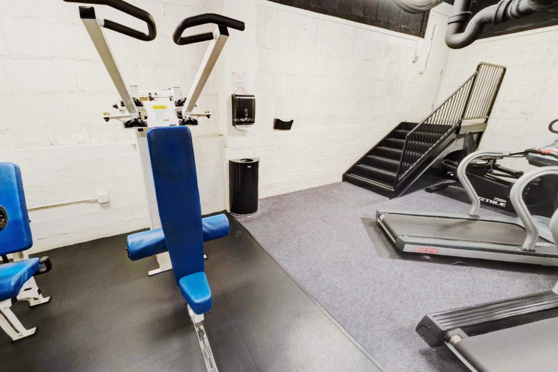 Delano Gym Shoulder Press Machine