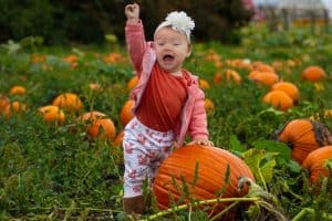 Baby at a Pumpkin Patch in DC