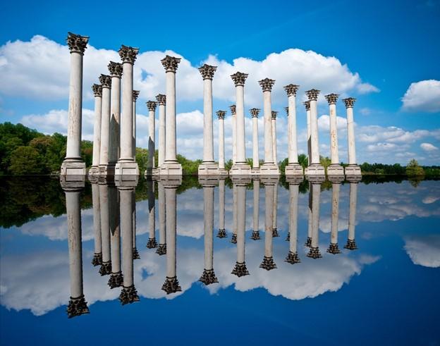 Washington DC Gardens